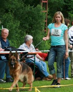 OG-Schau Regenstauf 13.06.2010 GHKLH Oilily Blue-Iris V2