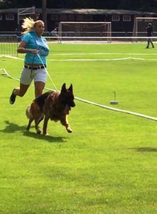 Jill & Winston Trabrunde beim Stand BSZS Nuernberg 2016