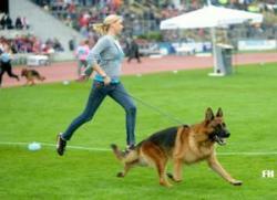 Kim & Pares BSZS 2012 schnelle Runde